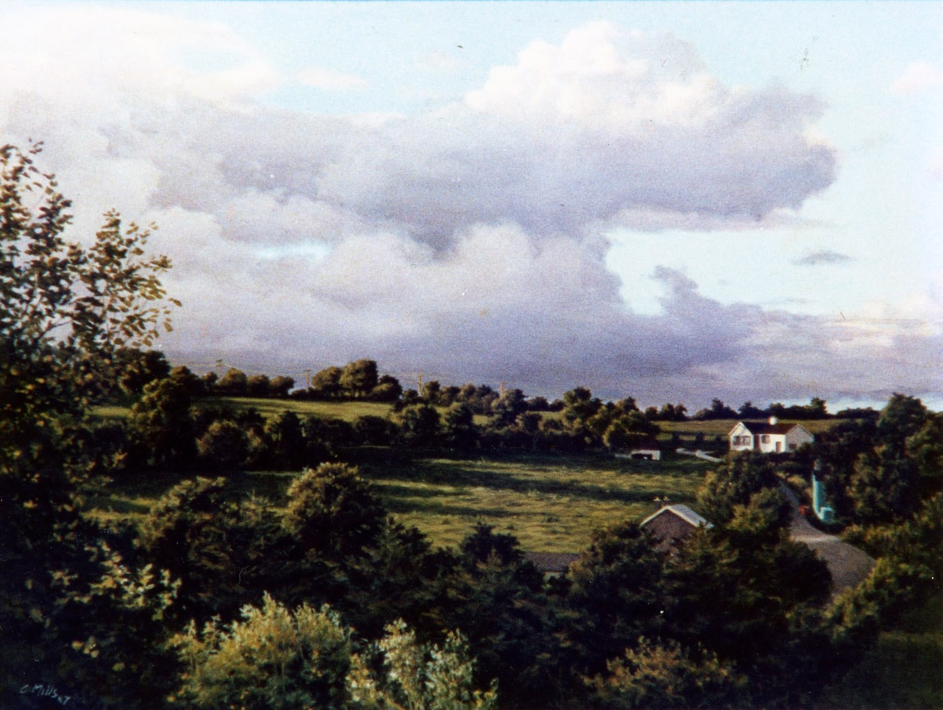 Bills Fields (View from My Studio) 1988 Oil on Panel 16 x 19
