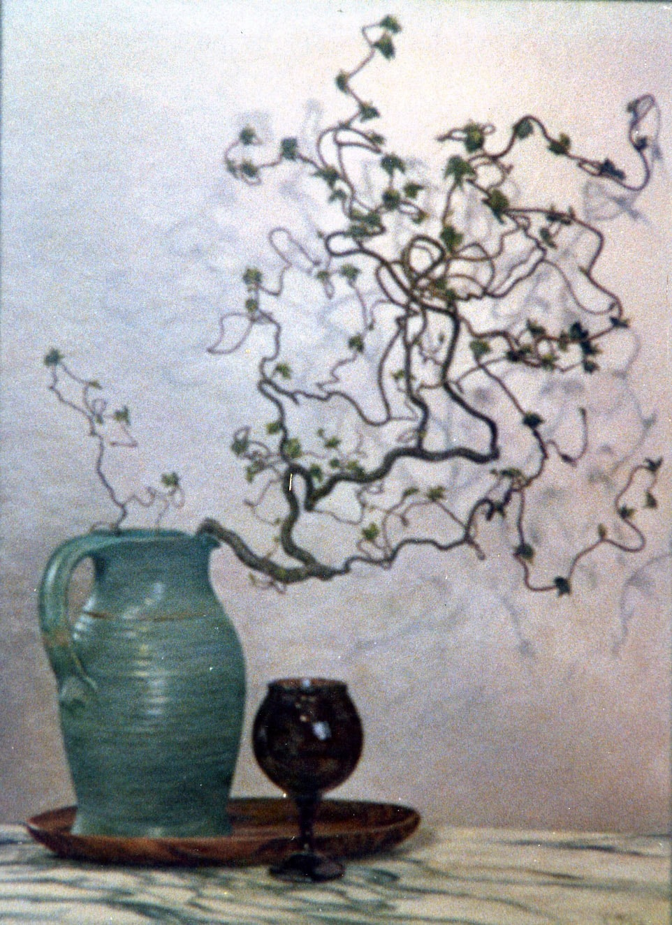 Contorted Hazel 1987 Oil on Panel 22 x 30